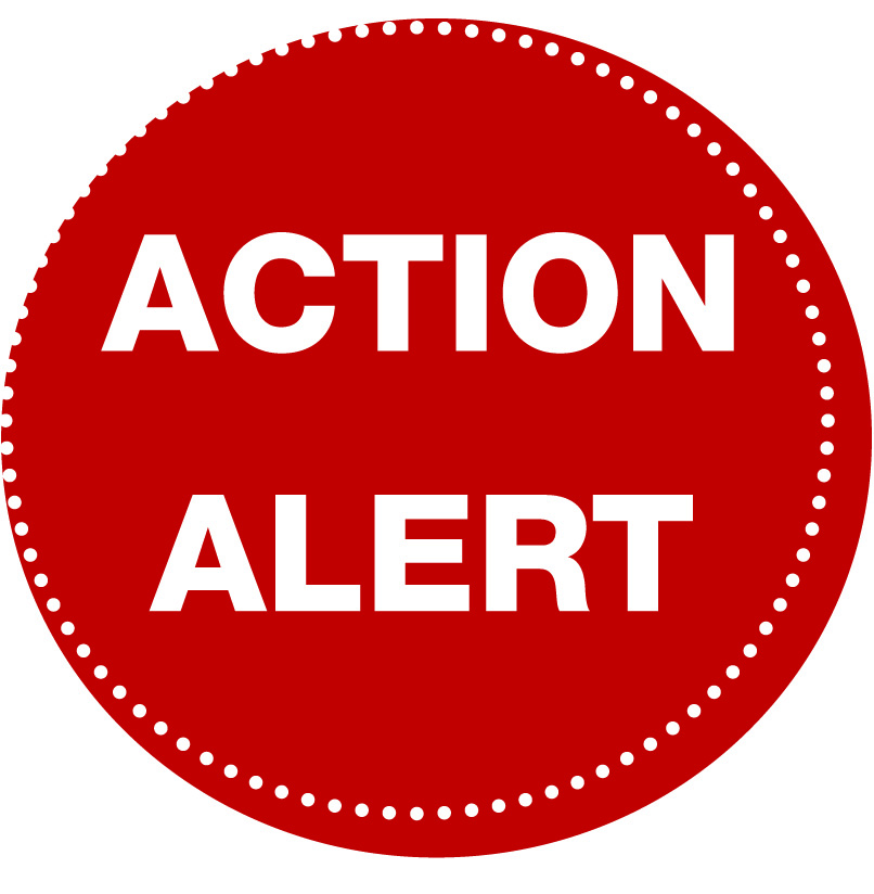 Advocacy Alert Personal Income Tax Take Action